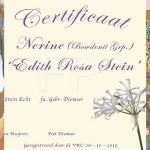 Doop Certificaat Nerine Edith Rosa Stein
