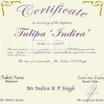 certificaat Tulp Tulipa