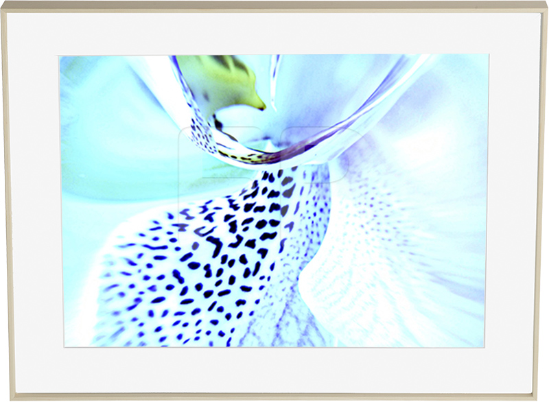 Aluminium houtkleurige lijst, Tender Tango Orchid