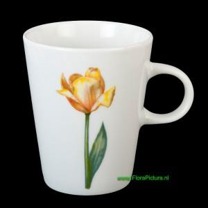 Beker tulp