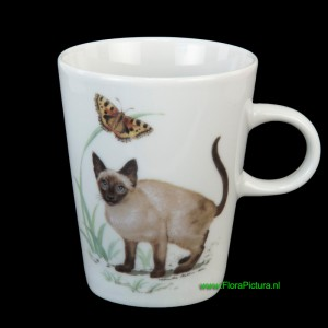 Beker kat poes