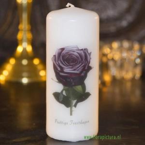Kaars roos