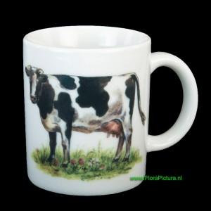 Mok koe